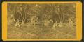 Adults and children posing in the garden, from Robert N. Dennis collection of stereoscopic views.png