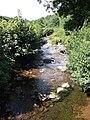 Afon Gwydderig - geograph.org.uk - 520935.jpg