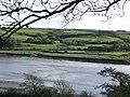 Afon Tywi - geograph.org.uk - 1033335.jpg