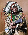 Afraid Of The Bear-Ma-To-Ko-Kepa. Cut Head, Sioux, 1872 - NARA - 519024coloredh.jpg