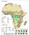 Africa Economia.jpg