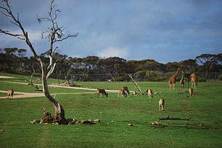 Hundred of Monarto Cadastral in South Australia