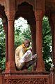 Agra (1248964162).jpg
