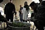 Airmen mentoring Afghan flight surgeons-medics DVIDS257645.jpg