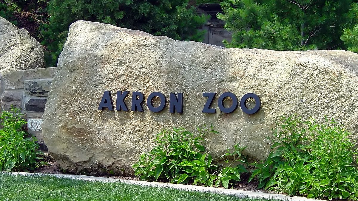 Check out our membership FAQs. Join the Akron Zoo today! You can join or renew online and immediately print out the receipt for temporary admission to the Akron Zoo.* Click on the membership levels below to purchase, renew or gift a membership. Please allow 2 – 3 weeks to receive your permanent membership card in the mail.