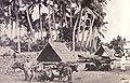Albay wagons, 1899.jpg