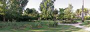 Albury botanical gardens panorama