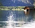 Almsee Hütte.jpg