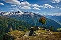 Alps of Switzerland DSC 2137-33 (14523929768).jpg