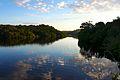 Amanhecer no Amazonas.jpg
