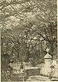 America's Oldest Cemetery, Pensacola.jpg
