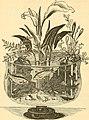 American enterprise. Burley's United States centennial gasetteer and guide (1876) (14780683544).jpg