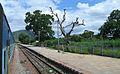 Andhra Pradesh - Landscapes from Andhra Pradesh, views from Indias South Central Railway (88).JPG