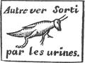 Andry - De la génération des vers (1741), p. 122.png