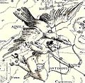 Aquila by Hevelius.jpg