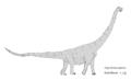 Argentinosaurus-ZE-001.png