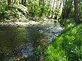 Auma river 3.jpg