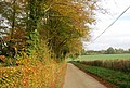 Autumn colours by the Wealdway - geograph.org.uk - 1585550.jpg