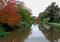 Autumn colours on the canal. Rugeley, Staffordshire - geograph.org.uk - 1556794.jpg