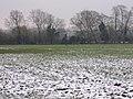 Avon meadow - geograph.org.uk - 334198.jpg