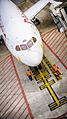 B787 Dreamliner @ Brussels Airport (7976144887).jpg