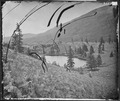 BEAVER LAKE CONEJOS CANYON, COLORADO - NARA - 524279.tif