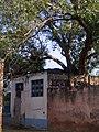 Baba bai Bukhr ji - panoramio.jpg