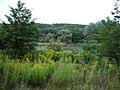 Babatpusztai 2. tónál - panoramio.jpg