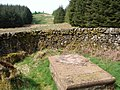 Bads Knowe, Martyrs' Tomb and Monument - geograph.org.uk - 797211.jpg