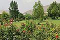 Bagh-e Babur-2013.jpg