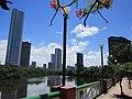 Bairro da Torre e o Rio Capibaribe vistos do Bairro da Jaqueira - Zona Norte - Recife, Pernambuco, Brasil (8645458807).jpg