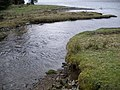 Barnacarry Burn flowing into Loch Fyne - geograph.org.uk - 1204100.jpg