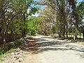 Barreal - San Juan - Argentina - panoramio - littletroll (2).jpg