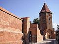 Baszta Bluszczowa (1363) w ciągu murów miejskich.JPG