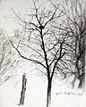 Baum Skizze.jpg