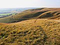 Beacon Hill access land, near Heddington - geograph.org.uk - 1536656.jpg