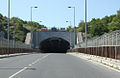 Bears-border-tunnel.jpg