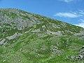 Beinn Liath Mhor - geograph.org.uk - 203487.jpg