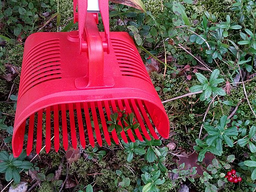 Berry-picking rake