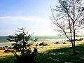 Biển ở Hồ Cóc, Bưng Riềng.jpg