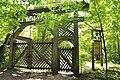 Bialowieza National Park in Poland0008.JPG