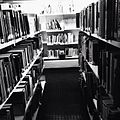Biblioteca ort.jpg
