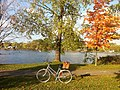Bicycle with picnic basket in autumn.jpg