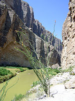 Big Bend National Park PB112578.jpg