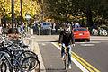 Bikes SunnyDay (15108510293).jpg