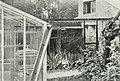 Bird notes (1902) (14726897516).jpg