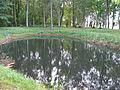Blankenfelde Manor Park 2015-09-26 (3).jpg