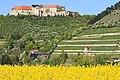 Blick zum Schloss Neuenburg 2H1A0218WI.jpg