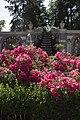 Bloemen, tuin kasteel Rosendael.jpg