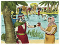 Book of Exodus Chapter 16-3 (Bible Illustrations by Sweet Media).jpg